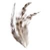 Chinchilla Feather Saddles